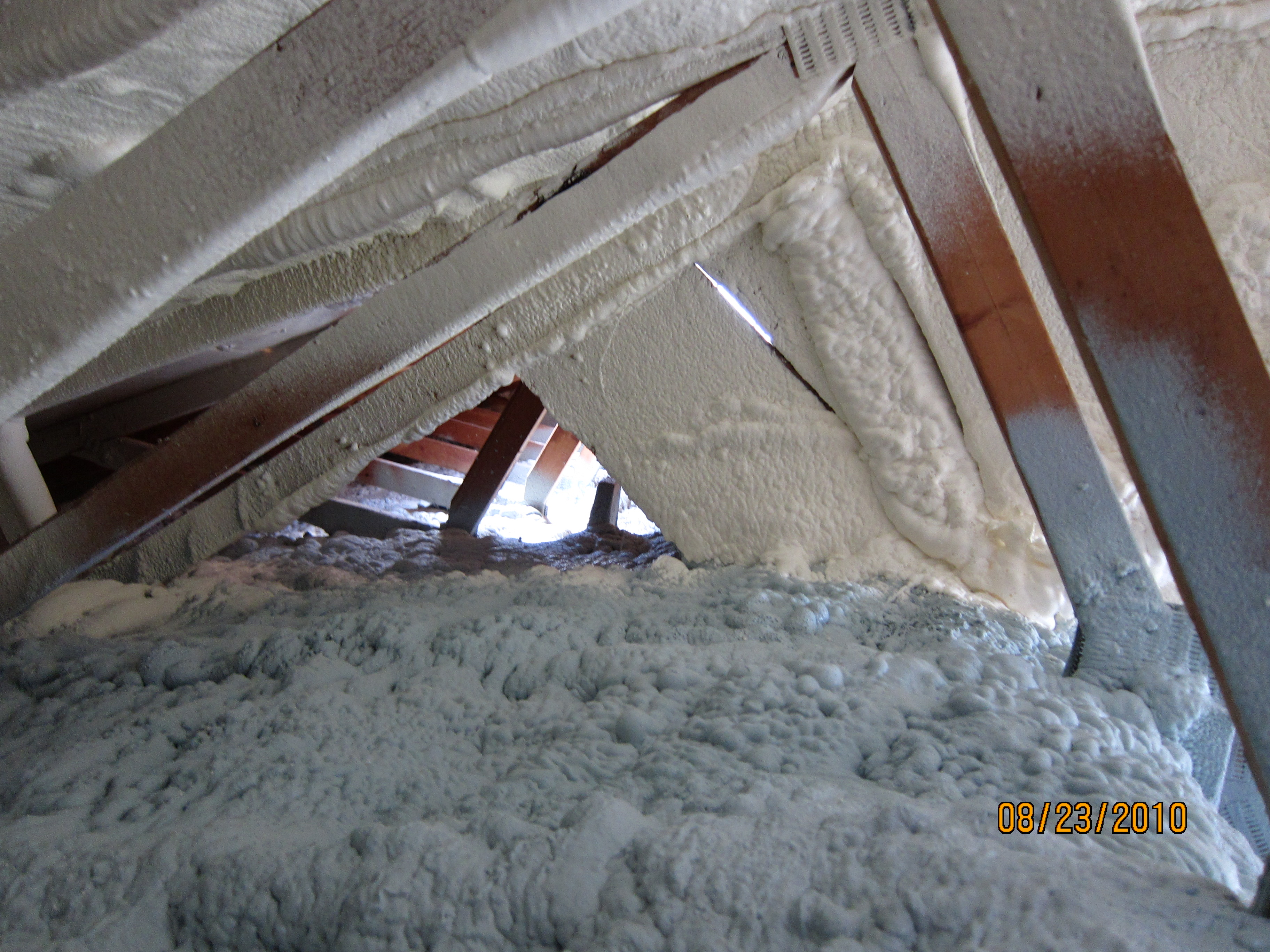 Attic Condensation Black Mold And Spray Foam Bott Roofing